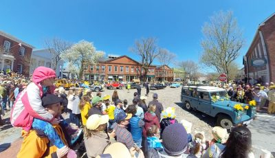 2019 Daffodil Festival – Antique Car Parade